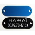 Médaille identification chat chien couleur bleu gravure offerte
